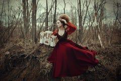 少女在有创造性的发型的一件红色礼服摆在 图库摄影