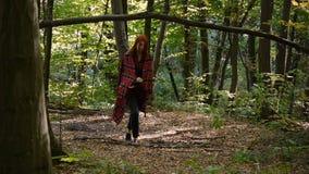 少女在格子花呢披肩包裹了 单独走在森林整体计划 影视素材