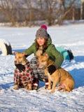 少妇与两个美国人美洲叭喇狗冬天 免版税库存照片