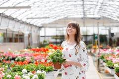 少妇买的花在园艺中心 看花的妇女在商店 一名微笑的妇女的画象与 库存图片