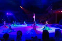 少妇体操运动员在马戏竞技场 免版税库存照片