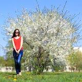 少妇和春天开花的树 库存图片