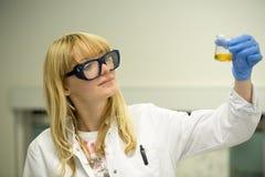 少妇在实验室工作 库存照片