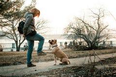 少妇在晚上公园训练她的狗 免版税库存图片