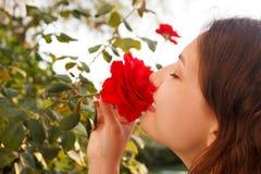 少妇在晴天嗅到一朵红色玫瑰 库存图片