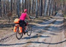 少妇在森林足迹的登山车乘驾 库存照片