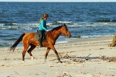 少妇在海滩的骑乘马 免版税库存图片