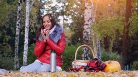 少妇坐喝从一个热水瓶的野餐热的茶在秋天公园 女孩在万圣夜附近南瓜的地毯  库存图片