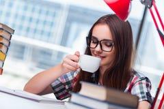 少妇学生为学院检查做准备 免版税库存图片