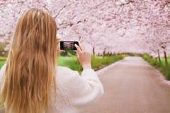 少妇射击春天有手机的开花庭院 免版税库存照片