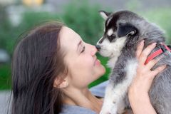 少妇拿着爱斯基摩她的最好的朋友小的宠物小狗在她的胳膊的 对狗的爱 免版税图库摄影
