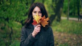 少妇挥动的槭树在她的面孔附近离开在秋天公园 股票视频