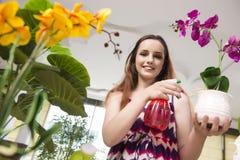 少妇照料家庭植物 免版税库存图片
