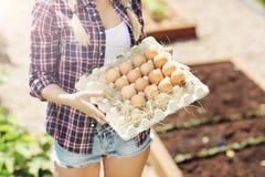 少妇用新鲜的有机鸡蛋 库存图片