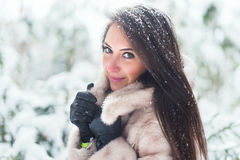 少妇美丽的冬天画象在公园 免版税库存图片