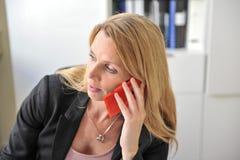 少妇聪明的电话办公室 免版税库存照片