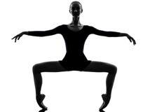 少妇芭蕾舞女演员跳芭蕾舞者 免版税库存图片