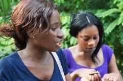 少妇谈话与她的女朋友 免版税图库摄影