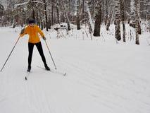 少妇越野滑雪在一个美妙的森林里 库存照片