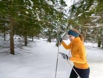 少妇越野滑雪在一个美妙的森林里 图库摄影