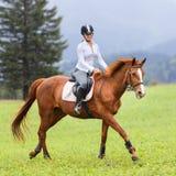 少妇骑马在山草甸的栗色马 免版税库存图片