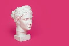 少妇,古希腊在与空间的桃红色背景隔绝的女神胸象大理石头文本的 免版税库存照片