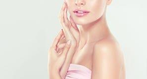 少妇画象有干净的新鲜的皮肤的和软,精美组成 免版税库存图片