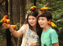 少年兄弟姐妹男孩和女孩在有在手边坐的鹦鹉和头的露天动物园里 免版税库存照片