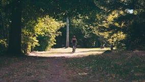 少年女孩在绿色树中的公园骑自行车在一个夏天晴天 影视素材