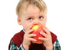 少许吃苹果的婴孩 免版税库存照片
