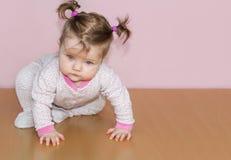 少许有马尾辫的婴儿女孩在爬行在地板上的头 免版税库存图片