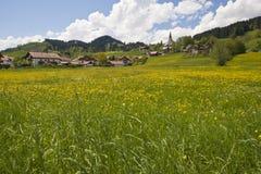 少许村庄在有开花的草甸的德国 免版税库存照片