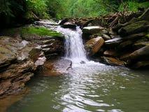 少许瀑布在森林里 免版税库存照片
