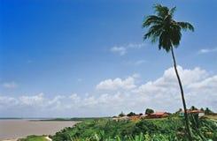 少许热带村庄 免版税库存图片