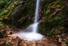 少许美丽如画的瀑布 图库摄影
