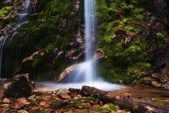 少许美丽如画的瀑布 库存照片