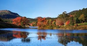 少许长的全景池塘 免版税库存照片