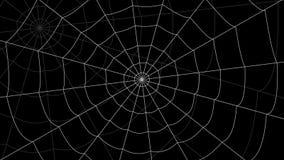 少量蜘蛛网移动反对黑背景 库存例证