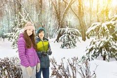 少年兄弟和姐妹冬天室外画象 库存照片