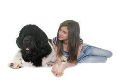 少年和纽芬兰狗 免版税库存图片