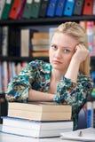 少年学生的联邦机关在图书馆里 库存照片