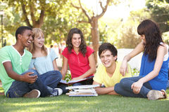 少年聊天的组公园的学员 免版税库存照片