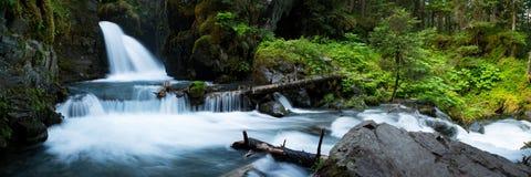 维尔京小河在阿拉斯加落 免版税图库摄影