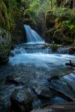 维尔京小河在阿拉斯加落 图库摄影
