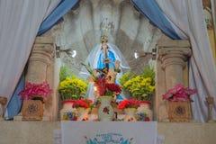 维尔京法坛在墨西哥大教堂里 免版税库存照片