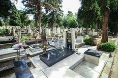 贝尔格莱德孩子公墓 免版税库存照片