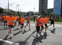 贝尔格莱德马拉松2014年 库存图片