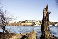 贝尔格莱德Kalemegdan堡垒和河Sava 库存照片