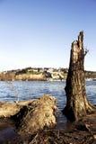 贝尔格莱德Kalemegdan堡垒和河Sava 免版税图库摄影