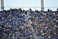 巴尔的摩乌鸦橄榄球场爱好者 库存照片